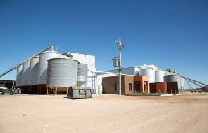 Freehold Flour Mill and Land for Sale ABM ID #4079