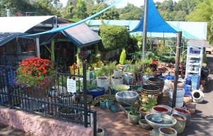 Garden Centre for Sale ABM ID #6023