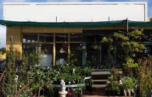 Garden Centre for Sale in Country Victoria ABM ID #6069
